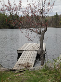 The dock on Devil Lake